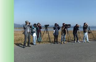 探鳥会の案内のイメージ
